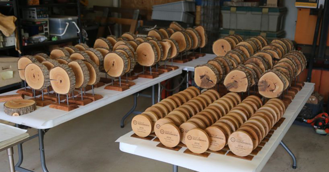 assorted wooden company awards